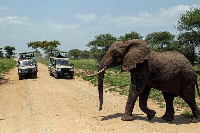 15 Days Spectacular Kenya & Tanzania Safari with Zanzibar Beach