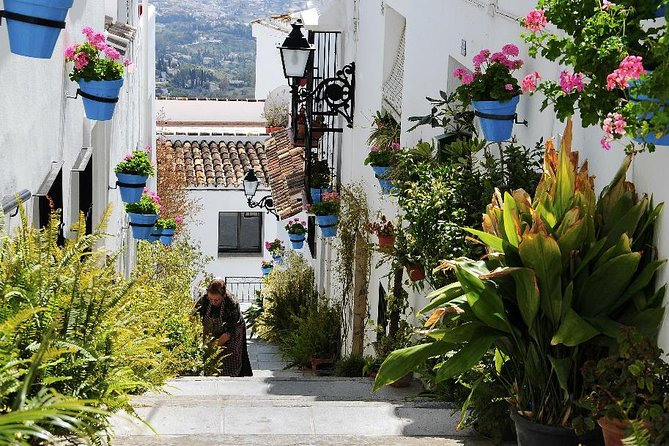 Private tours from Malaga to Mijas and Ojen for up to 8 persons