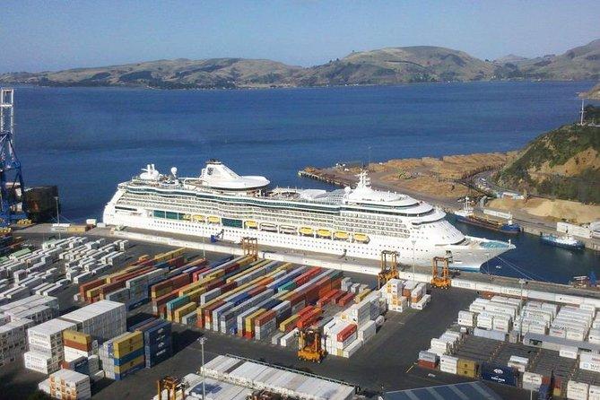 Dunedin Shore Excursion: Small-Group Tour of Dunedin