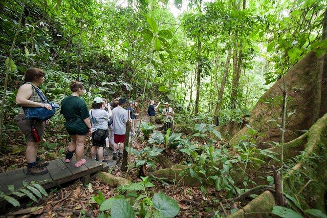 Sarapiqui River Cruise & Rain forest Hanging Bridge Walk. Private Tour