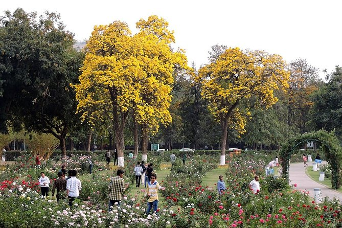 Delhi & Chandigarh Full Day Tour Including Lunch photo 9