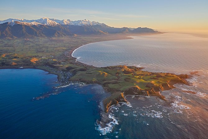 Whale Watching Flight in Kaikoura