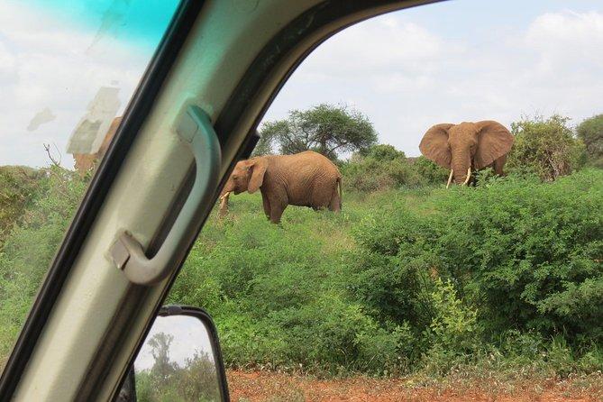 5 days 4 nights Nairobi-Maasai Mara-Lake Naivasha- Hell's Gate-Amboseli Safari