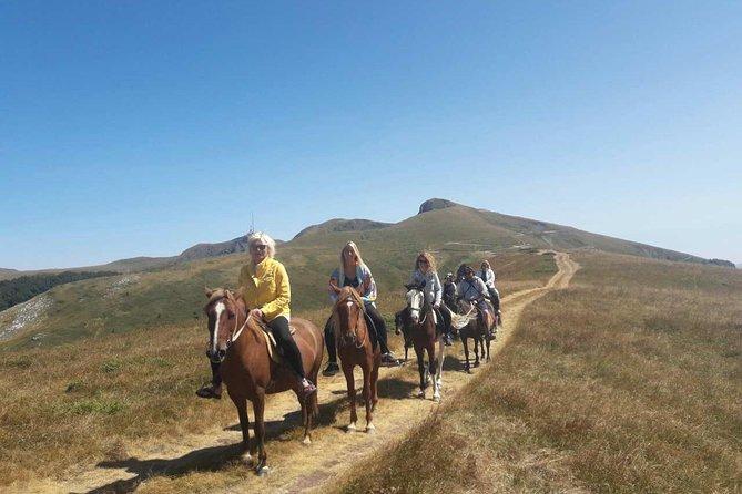 Horseback riding - Nationalni park Biogradska Gora