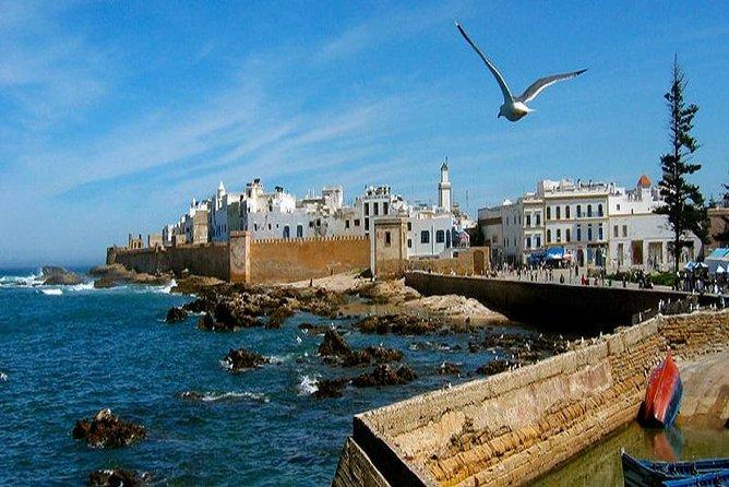 Old Essaouira Day Trip From Marrakech