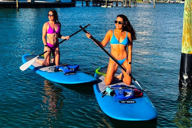 Paddle Board Rental - Full Day (8 Hours) photo 1