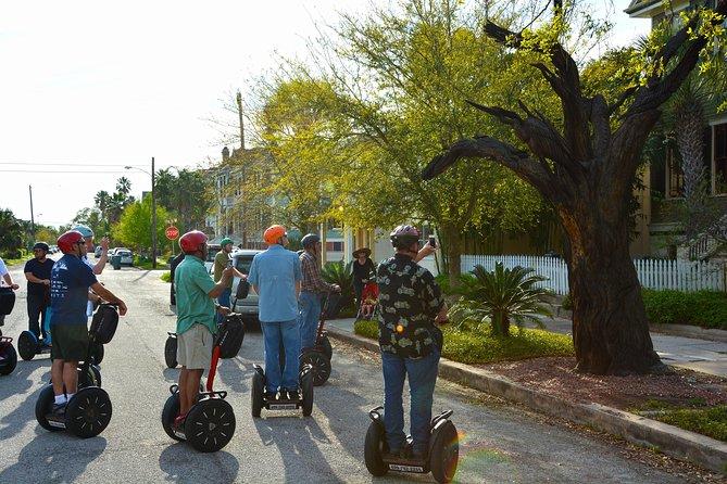 Segway Galveston Tree Carvings Tour