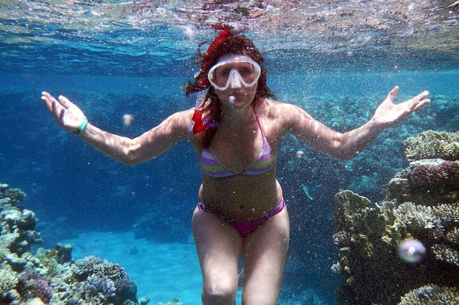 From Sharm-El-Sheikh: Ras Mohamed National Park Trip Snorkelling Trip