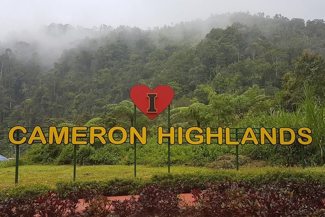 Cameron Highlands Amazing Day Trip Tour with Local Lunch