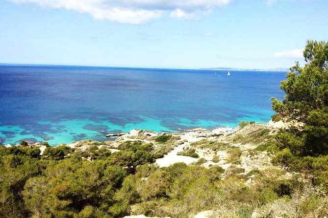 Mallorca: Try Scuba Diving in a Beautiful Nature Reserve photo 7
