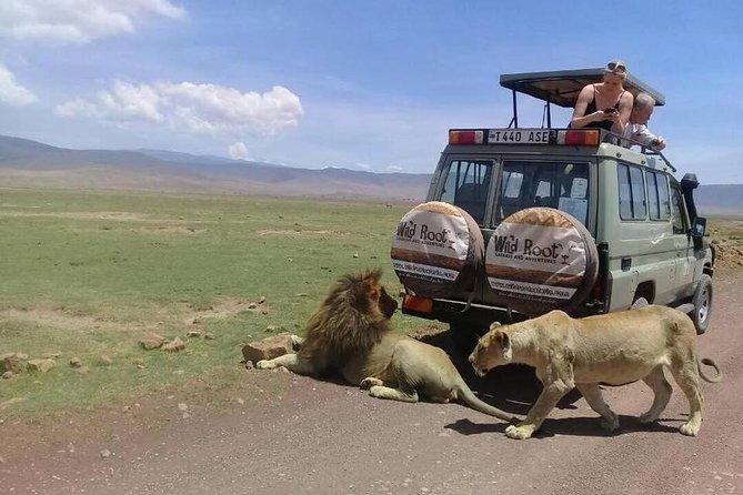 4: days Big five safari