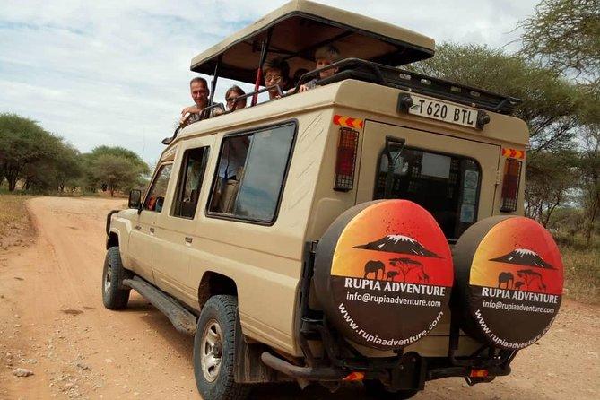 Tarangire & Ngorongoro safari