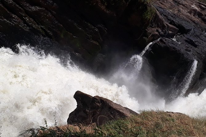 Private safari to Murchison Falls National Park with Transportation from Entebbe