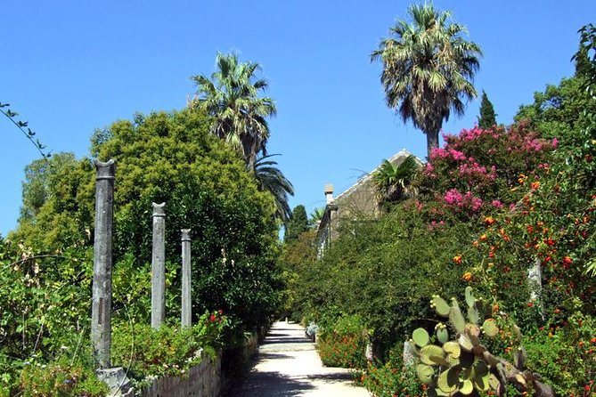 Ston & Trsteno Arboretum - Private Excursion from Dubrovnik w/ Mercedes Vehicle
