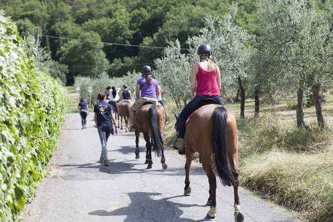 Tuscany: Horseback Riding Adventure with lunch in a Winery of San Gimignano