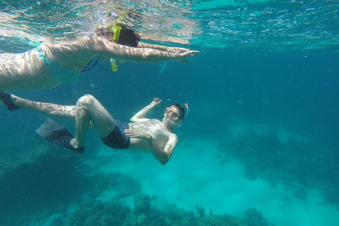 Special Dolphin House VIP snorkeling Sea Trip - Hurghada photo 19