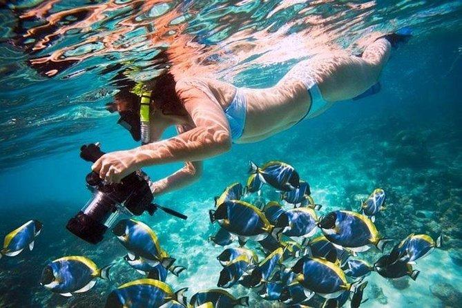 Giftun Island VIP Snorkeling Sea Trip & WATER SPORT - Hurghada