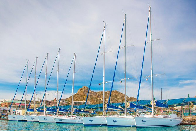 Private Luxury Sailing Cruise in Los Cabos with Lunch and Open Bar