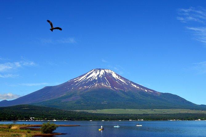 Private Tour: Mt. Fuji, Hakone Pirate Ship, Ropeway & Gotemba Premium Outlets