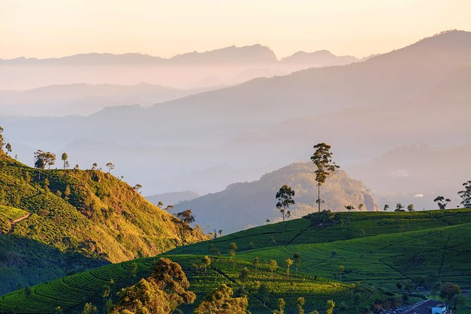 Nuwara Eliya Highlands from Kandy (Private Day Tour)