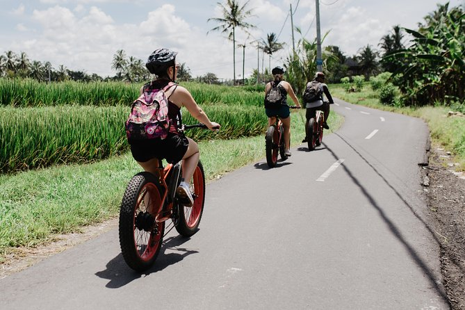 Half-Day Fat Tire Electric Bike Tour from Ubud
