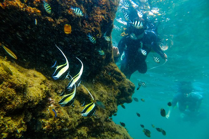 Cape Vidal Snorkeling Adventure
