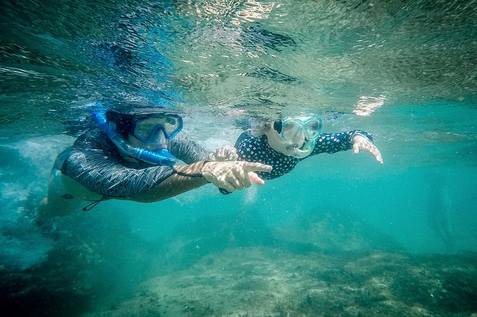 Our Snorkeling Adventures are child friendly! A great and safe introduction for the kids to the underwater world!
