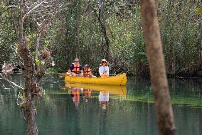 Tulum and Tankah Cenotes Eco-Adventure Tour