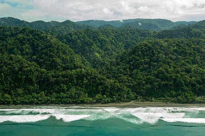 Trek 3 days / 2 nights in the heart of Corcovado National Park - 1 night in the park