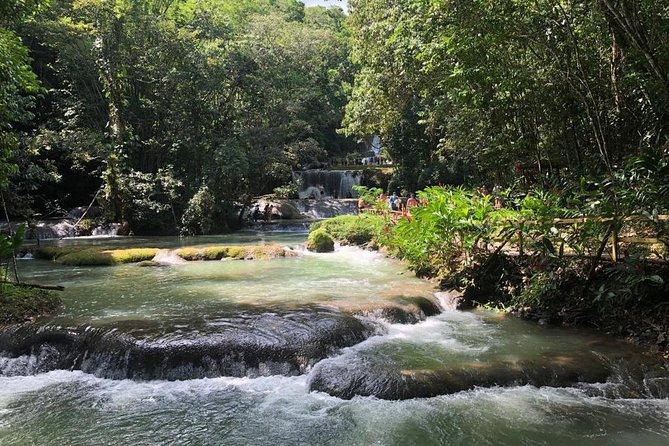 Ys Falls & Black River Safari Boat Cruise Tour