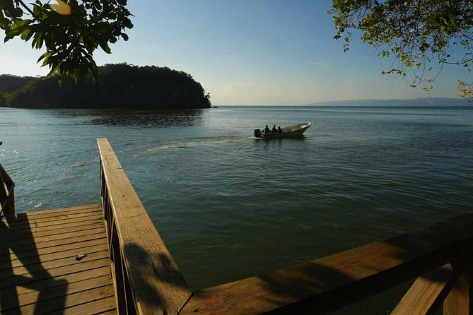 Los Haitises National Park - Hiking in Rain Forest + Private Boat to Caves