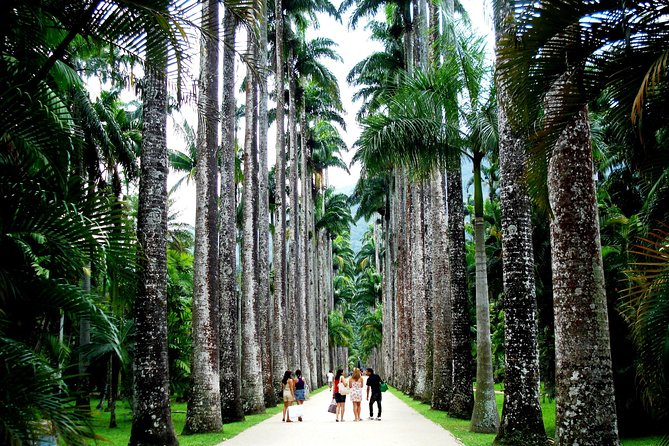 Botanic Garden & Parque Lage Guided Tour & Transfer