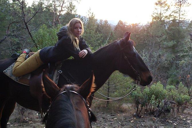 Horseback Riding, Trail Adventures