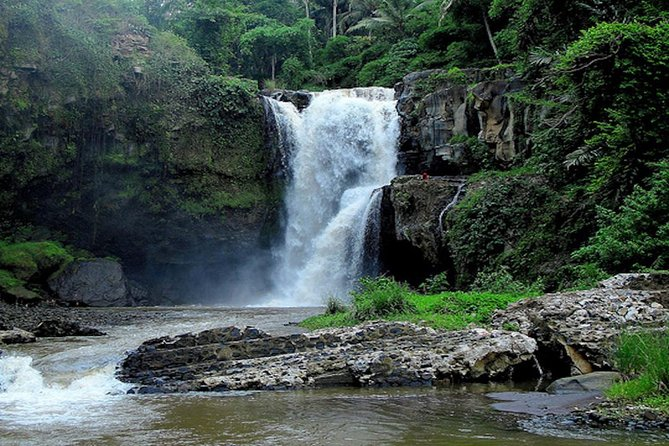 UBUD ,WATERFALLS AND ,SWING DAY TOUR