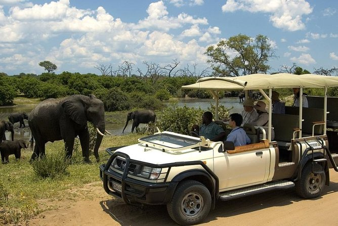 Chobe Full Day Trip photo 3