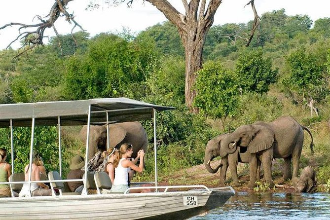 Chobe Full Day Trip photo 10