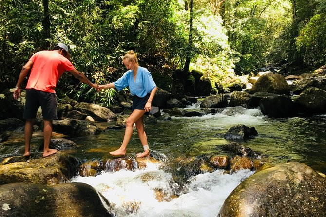 Explore Singharaja Forest Reserve (mirissa/weligama & Galle)