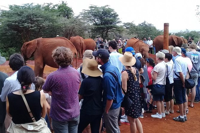 Full Day Nairobi Excursion