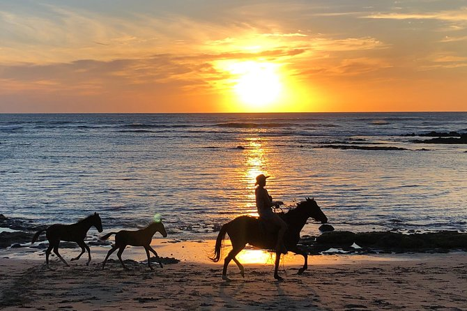 Private Tours and Transfer Tamarindo