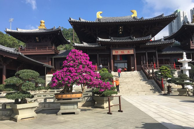 Private tour - Hong Kong's major sites and history
