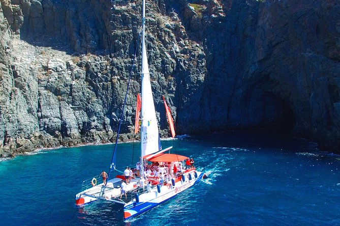 Whale Watching and Listening Eco Catamaran Tour with Food Tasting