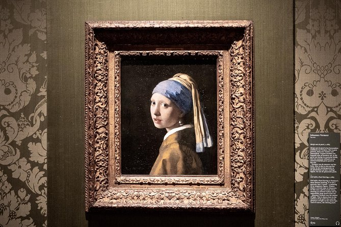 Private tour to The Hague inclusive the Mauritshuis museum by Car