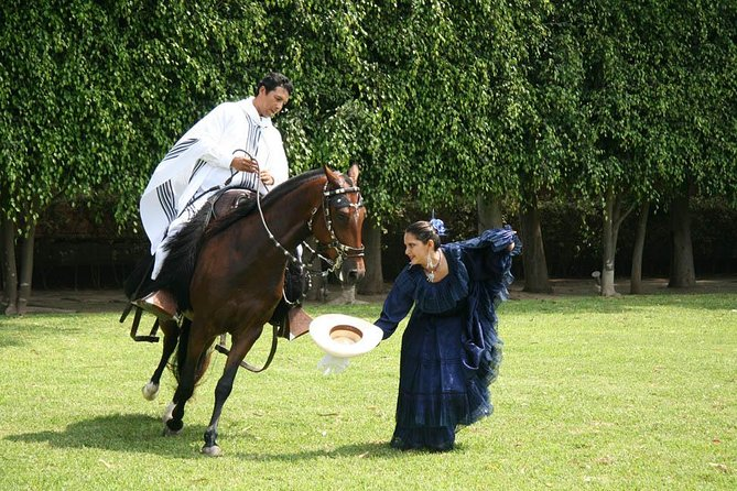 Peruvian Paso Horse Show with Lunch or Open Bar photo 4