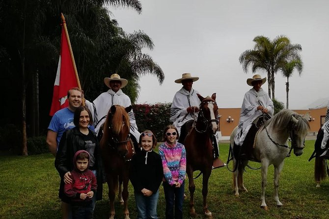 Peruvian Paso Horse Show with Lunch or Open Bar photo 7