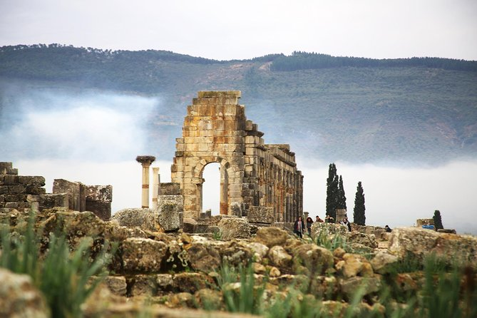 Day trip Meknes, Volubilis, and Moulay Idriss (private)
