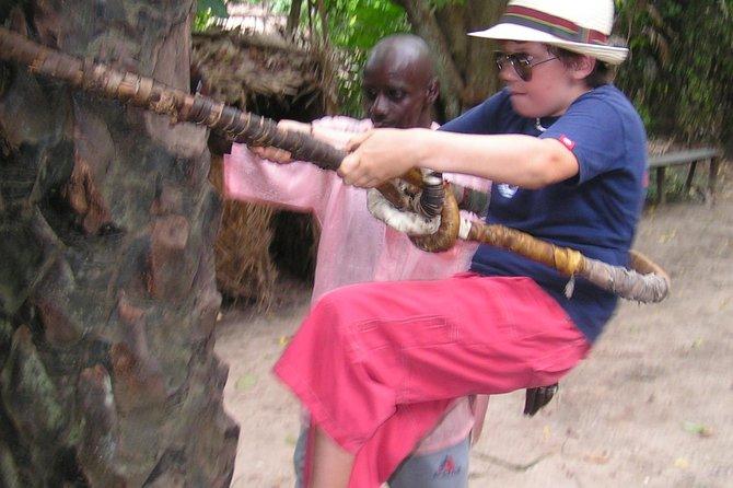 Private Makasutu Culture Forest Tour,
