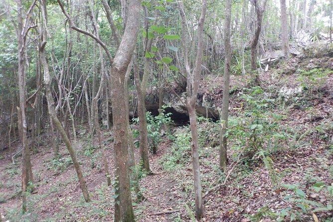 Cueva Ventana Journey