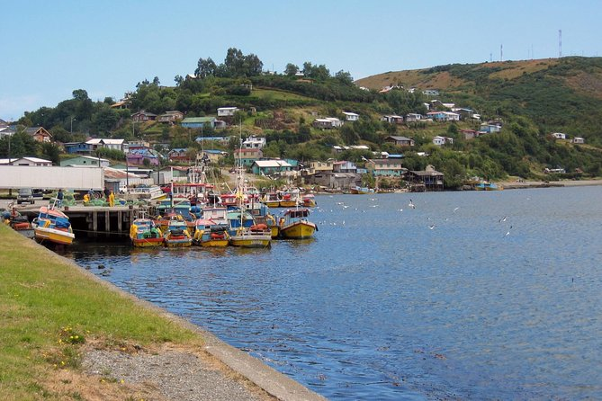 Puerto Varas; Full day, Chiloe island: Ancud, Caulin and Lacuy