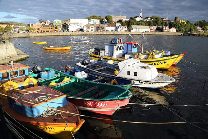 Day Trip to Ancud and Chiloe from Puerto Varas photo 2