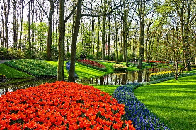 Private Keukenhof Gardens and Tulip Tour from Amsterdam Incl. Skip the Line